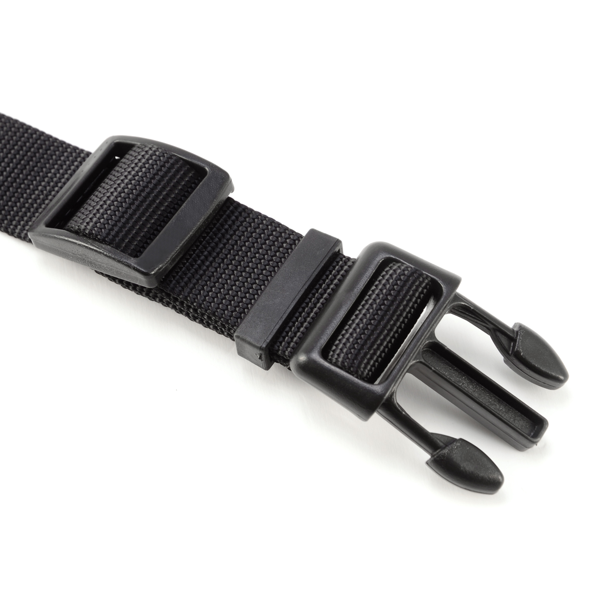 Cat Collar With Buckle Cm Uk
